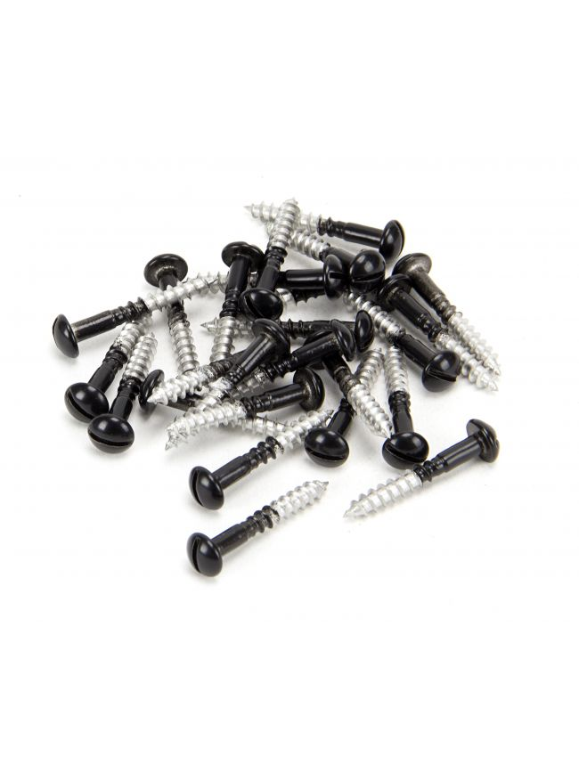 Black SS 3.5 x 25  Roundhead Screws (25)