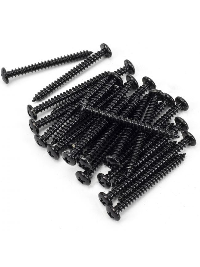 "Black 10x2"" Round Head Screws (25)"