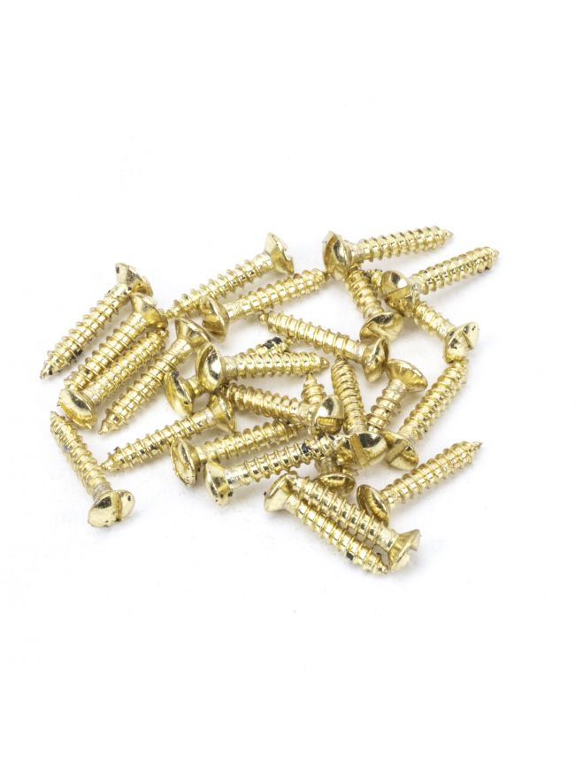 "Polished Brass SS 6x¾"" Countersunk Raised Head Screws (25)"