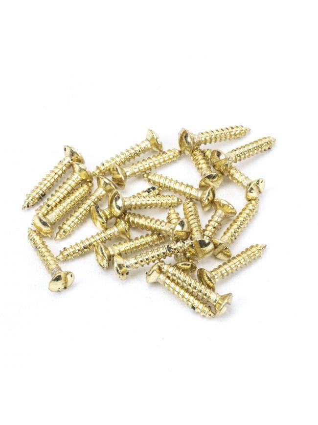 "Polished Brass SS 6x¾"" Countersunk Raised Head Screws (25)"