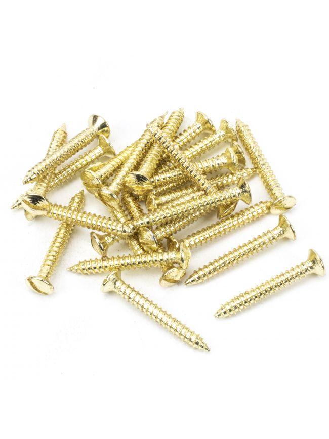 "Polished Brass SS 8x1½"" Countersunk Raised Head Screws (25)"